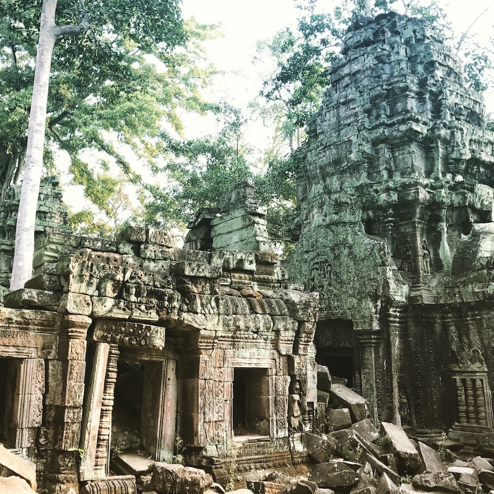 Siem Reap - Angkor - Tomb Raider Temple